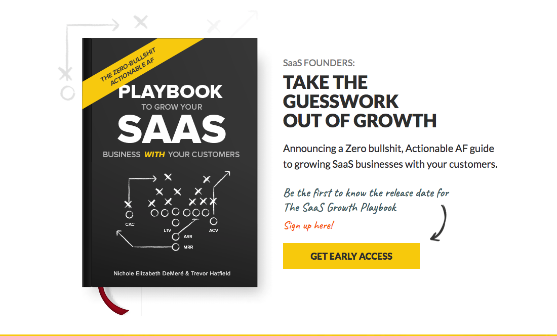 Growth channels to acquire SaaS customers - SaaS Growth Playbook by Nichole Elizabeth