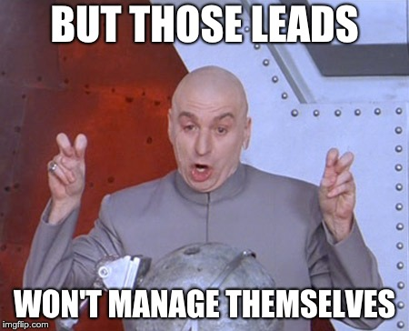 lead management austin powers